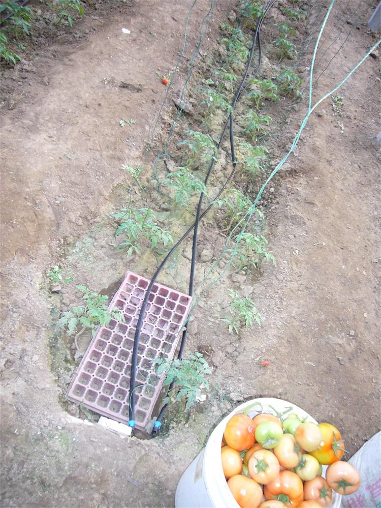 水肥一体化