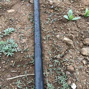 节水灌溉的意义及方法