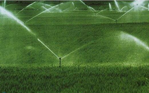寒地黑土区节水灌溉下水稻对基肥氮素的吸收