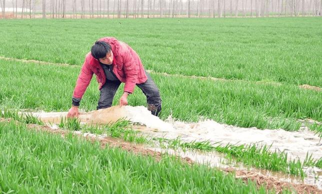 种植革命,水肥一体化技术改变农业生产模式