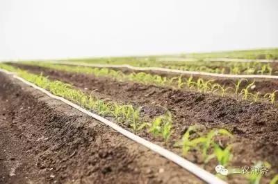 水肥一体化技术详解