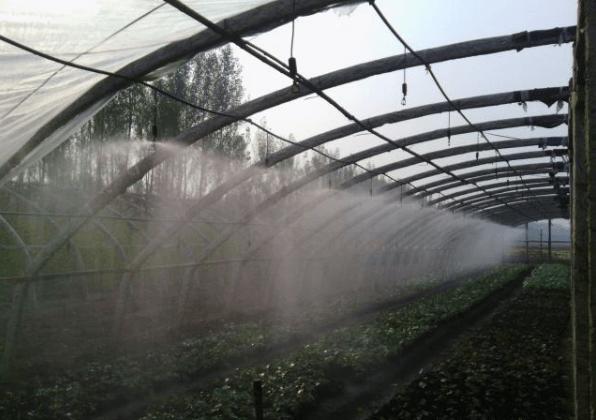 温室大棚微喷灌的微喷头设计安装