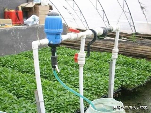 """水肥一体化中,必不可缺少的""""磷肥""""!一定要这么选"""
