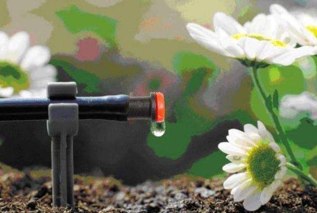 水肥一体化设备滴灌施肥的优点